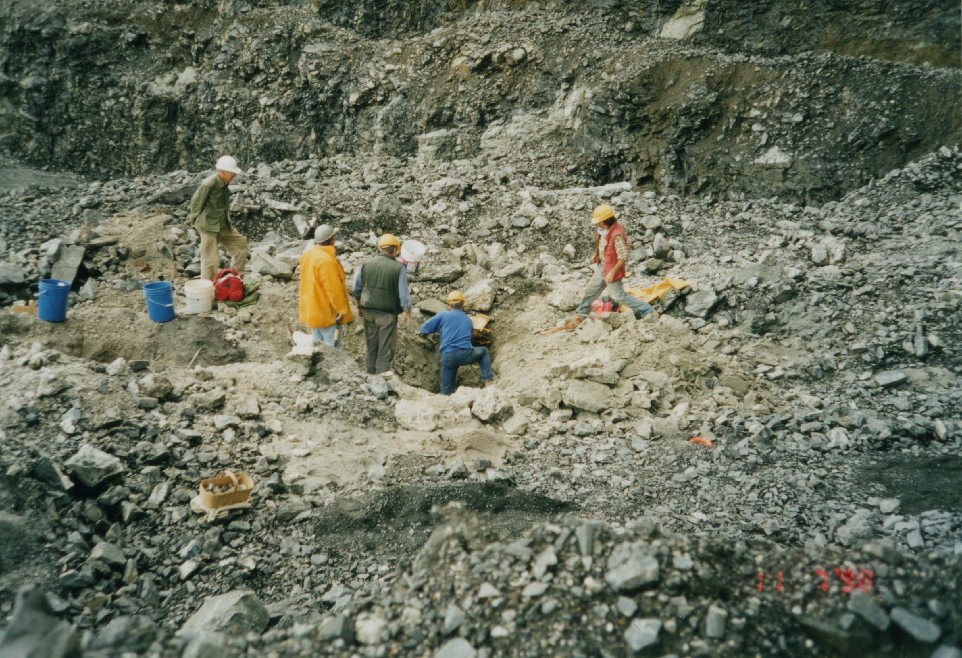 Rare Mineral species Poudrette Pegmatite MSH