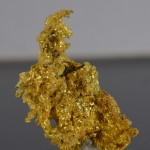 Gold fine mineral specimen new locality -012